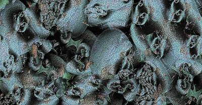 Weathered Print by Ron Bissett
