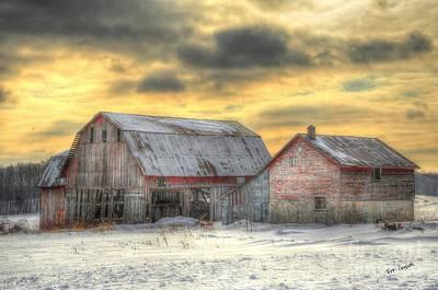 Michigan Photograph - Weathered by Terri Gostola
