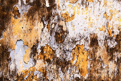 Photograph - Weathered Wall 03 by Rick Piper Photography