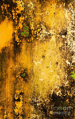 Photograph - Weathered Wall 05 by Rick Piper Photography
