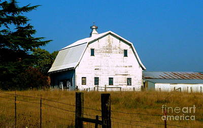 Photograph - Weathered White Barn  by Susan Garren