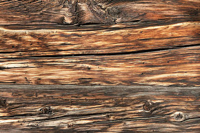 Weathered Wood 6 Art Print by Charles Lupica
