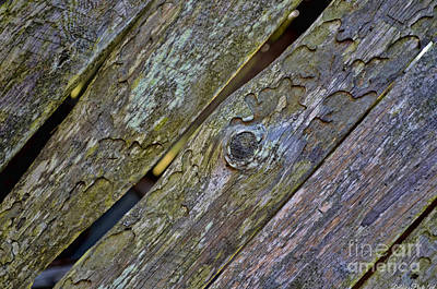 Photograph - Weathered Wood Boards by Debbie Portwood