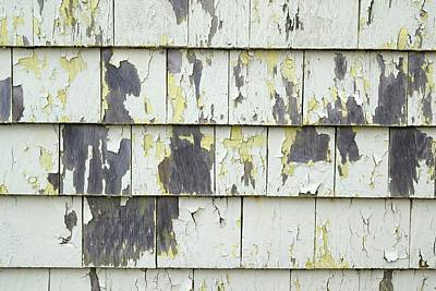 Peeling Painted Wood Wall Art - Photograph - Weathered Wooden Panels by Steve Horrell/science Photo Library