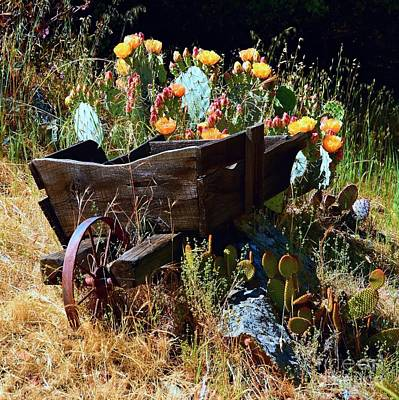 Photograph - Weathered Wooden Wheelbarrow by Patrick Witz
