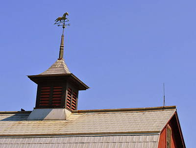Weathervane Art Print