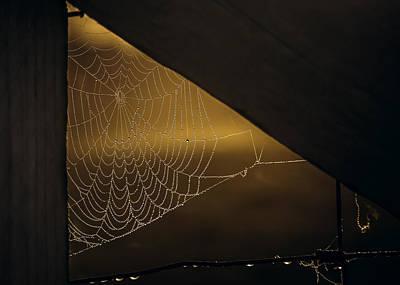 Spider Web Photograph - Web by Chris Fletcher