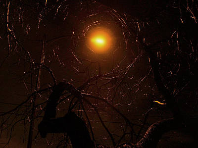 Photograph - Web Of Light by Randal Bruck