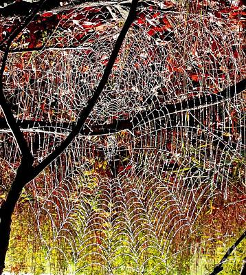 Photograph - Web On Web by Christian Mattison