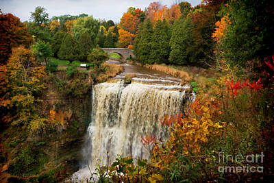 Photograph - Websters Falls In Autumn by Barbara McMahon