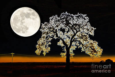 Wall Art - Photograph - Wedded To The Moon by Betty LaRue
