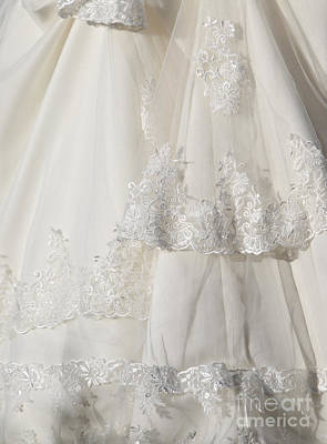Chemical Glassware - Wedding Dress  by Dan Radi