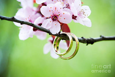 Floral Engagement Ring Photograph - Wedding Rings Closeup With Pink Cherry Flowers by Pixachi