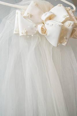 Photograph - Wedding Veil by Teresa Blanton