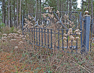 Photograph - Weedy Gate by Linda Brown