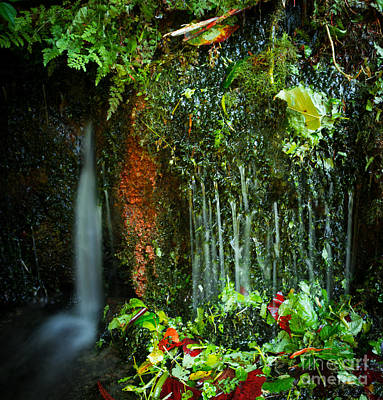 Photograph - Weeping Flow by Wayne Stacy