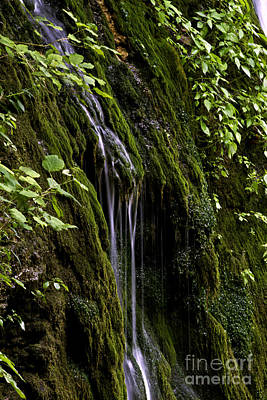 Photograph - Weeping Rock by Ken Frischkorn