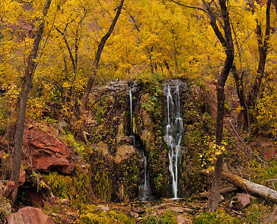 Photograph - Weeping Rock by Leland D Howard