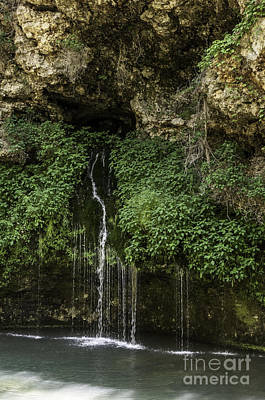 Photograph - Weeping Springs No. 2 by Curtis Dale