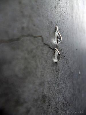 Photograph - Weeping Stone by Leena Pekkalainen
