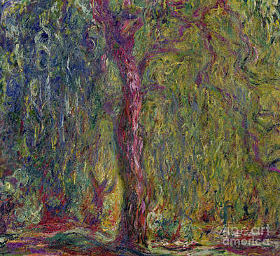 Lily Pad Painting - Weeping Willow by Claude Monet
