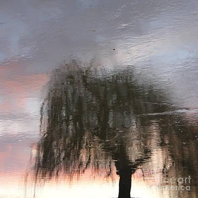 Weeping Willow Art Print by Karin Ubeleis-Jones