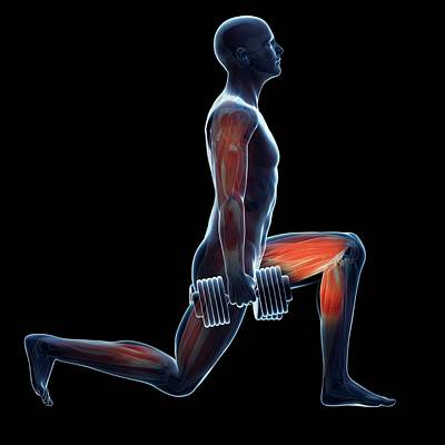 Weight Training Art Print by Sebastian Kaulitzki