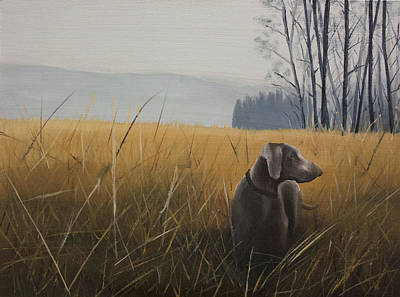 Weimaraner In The Field Original by Pavel Francev