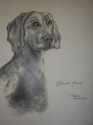 Drawing - Weimaraner by Paula Rountree Bischoff