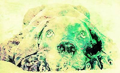 Puppy Mixed Media - Weimaraner Puppy by Jennifer Choate