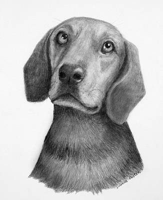 Drawing - Weiner Dog by Lorraine Foster