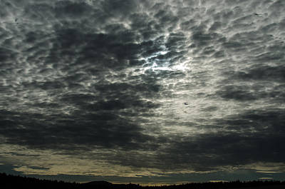 Photograph - Weird Clouds by Linda Larson