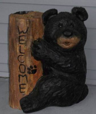 Photograph - Welcome Bear by John Mathews