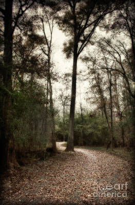 Photograph - Welcome Home by Cris Hayes