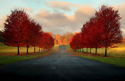 Fall Photograph - Welcome Home by Rob Blair