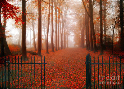 Herbst Photograph - Welcome by Jacky Gerritsen