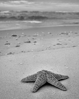Welcome To Destin Bw Art Print by JC Findley