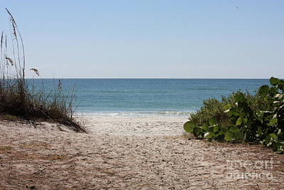 Gulf Coast Wall Art - Photograph - Welcome To The Beach by Carol Groenen