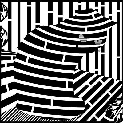 Trippy Maze Art Drawing - Welcome To The Cat Side Maze by Yonatan Frimer Maze Artist