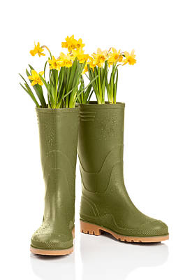 Planting Flowers Photograph - Wellington Boots by Amanda Elwell