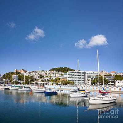 New Zealand Photograph - Wellington Oriental Bay Marina New Zealand by Colin and Linda McKie