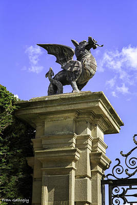 Photograph - Welsh Dragon by Fran Gallogly