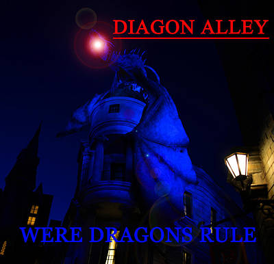 Photograph - Were Dragons Rule by David Lee Thompson