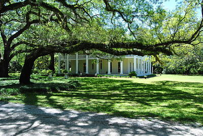 Wesley House And The Oak Art Print by Michele Kaiser