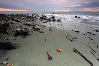 Photograph - West Coast by Emilynorton