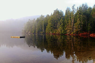 Photograph - West Coast Lake Reflections by Peggy Collins