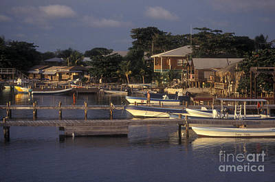 Photograph - West End Docks Roatan by John  Mitchell
