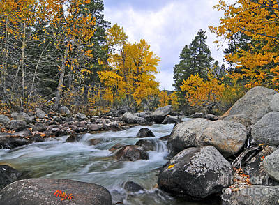 Photograph - West Fork Of Rock Creek Fall Colors by Gary Beeler