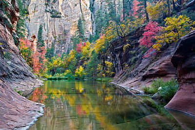 West Fork Serenity Art Print by Guy Schmickle