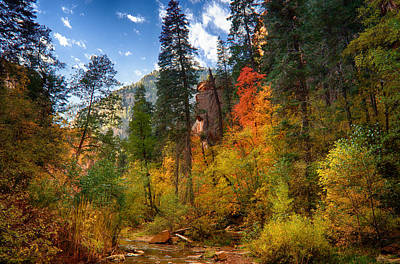 West Fork Wonders  Art Print by Saija  Lehtonen